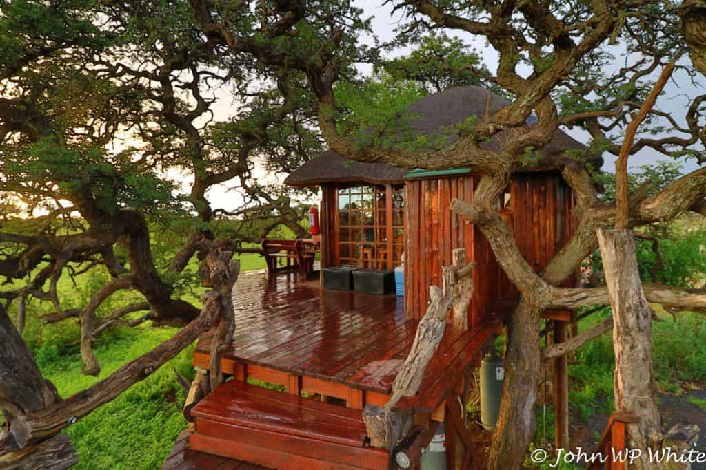 The Kameeldoring Treehouse Deck