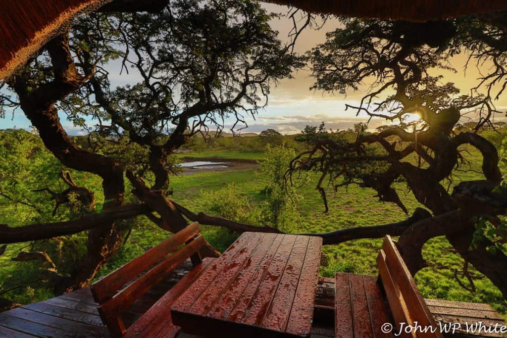 Kameeldoring Treehouse View