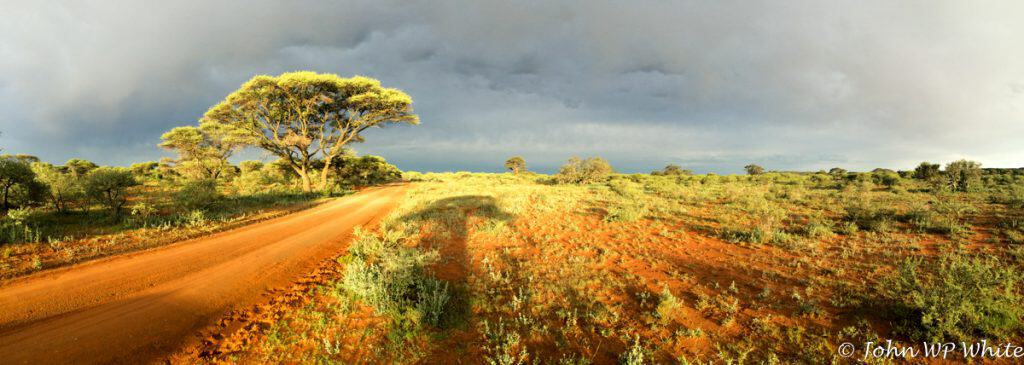 Mokala National Park Sunset after Storm